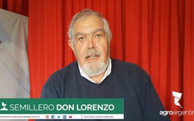 Semillero Don Lorenzo: Inicios y actualidad